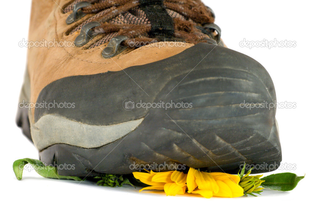 Hiking boot crushing flower. Isolated on white — Stock Photo #1254637