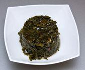 Sea cabbage — Stock Photo