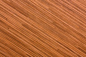 Texture of bamboo — Photo