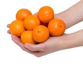 Tangerines in hands — Stock Photo