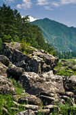 Altai — Stock Photo