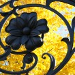 Mikhailovsky garden fence — Stock Photo #1247795