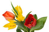 Bouquet of red and yellow tulips — Stock Photo