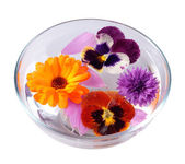 Bowl of water and flowers — Stock Photo