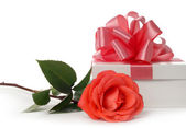 Scarlet rose and white box — Stockfoto
