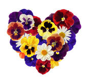 Heart from various flowers on white back — Stock Photo