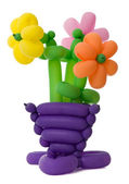 Ballon flowers — Stock Photo