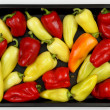 Peppers — Stock Photo #1227382