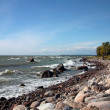 The coastline of Baltic sea — Stock Photo