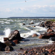 Baltic sea — Stock Photo #1292361