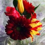 Fresh bouquet in vase — Stock Photo