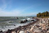 The coastline of Baltic sea — Stock Photo