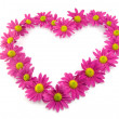 Royalty-Free Stock Photo: Pink flowers in a shape of a heart