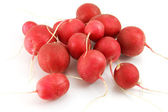 Fresh red radish isolated on a white bac — Stock Photo