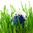 Easter eggs in green grass with white b — Stock Photo