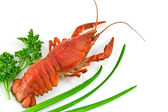 Lobster with Green parsley and onion iso — Stock Photo