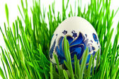 Easter eggs in green grass with white ba — Stock Photo