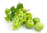 Bunch of fresh green grapes — Stock Photo