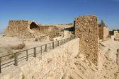 Al-Karak castle — Stock Photo