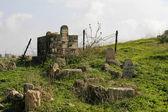 坟墓 — 图库照片