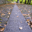 Pathway to autumn - Stock Photo