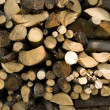 Stacked wood logs — Stock Photo