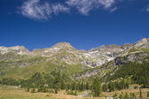 Alpine summer landscape — Stock Photo