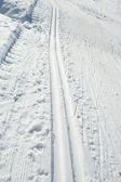 Cross-country ski tracks — Stock Photo