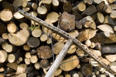 Stacked wood logs and rake — Stock Photo