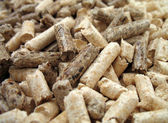 Wood pellets close-up — Stock Photo