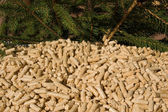 Wood pellets and red deal — Stock Photo