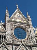 Siena duomo facade — Stock Photo