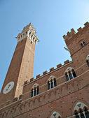 Siena Torre Mangia — Stock Photo