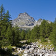 """Leone"" mount and Alpe Veglia — Stock Photo #1254047"