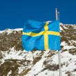Swedish Flag - Stock Photo
