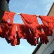 Royalty-Free Stock Photo: Marrakesh Red wool drying