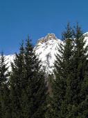 Over 3000 meters peak — Stock Photo