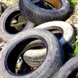 Stock Photo: Tire Waste