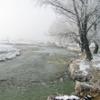 River in winter — Stockfoto #2218897