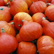 Crop of pumpkins — Stock Photo