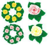 Květina sampler - izolované květ — Stock fotografie