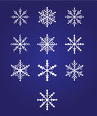 Ten beautiful snowflakes — Stock Vector