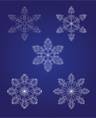 Five beautiful snowflakes — Stock Vector