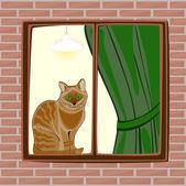 The cat — Stock Vector