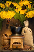 Stiill life with Antique coffee grinder — Stock Photo
