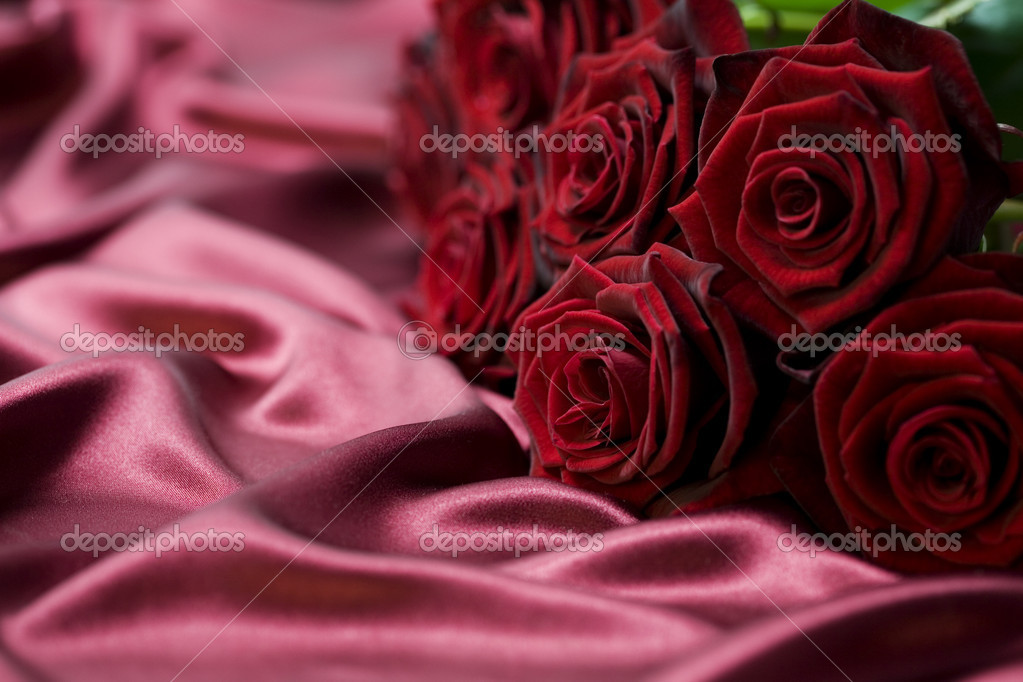 Red roses — Stock Photo #1254192