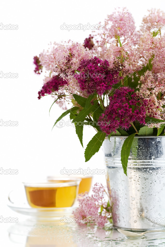 Herbal tea and fresh wild flowers over white — Stock Photo #1365003