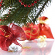 Christmas decorations — Stock Photo #1390551