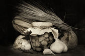 Knoblauch — Stockfoto