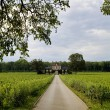 Vineyard in Burgundy — Stockfoto